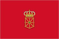 Navarra se Mueve